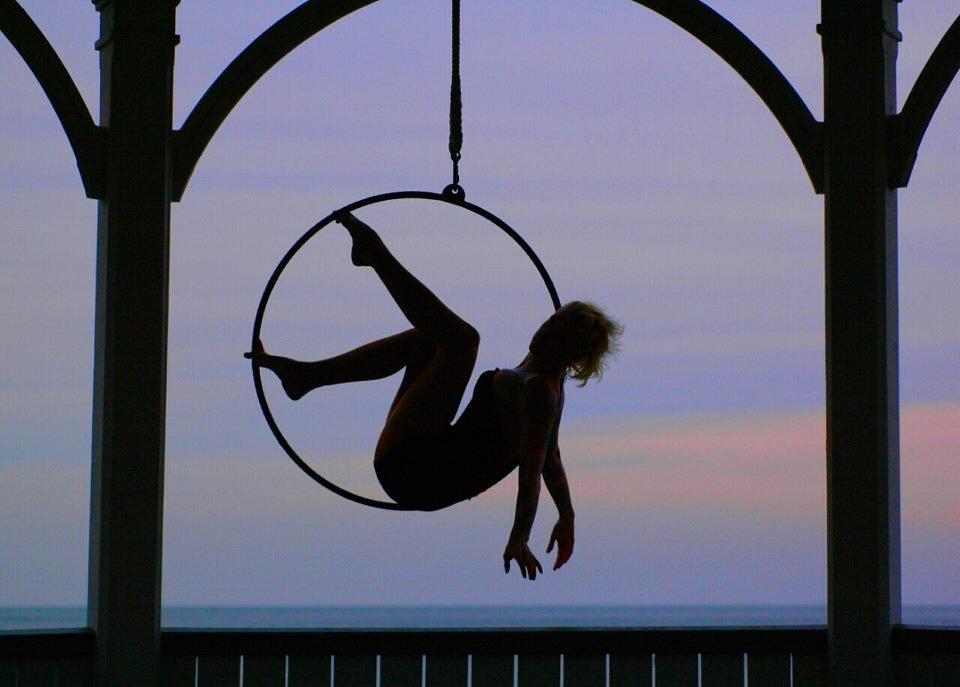 Paradisaea-Aerial-Dance-8